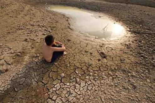 WWF destaca el papel de la naturaleza para combatir la desertificación y la sequía (WWF)