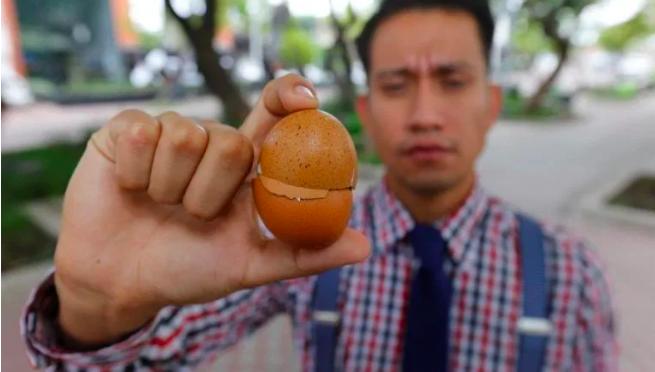 Jalisco – Organización limpia el contaminado río Santiago con cascarón de huevo (Sin Embargo)