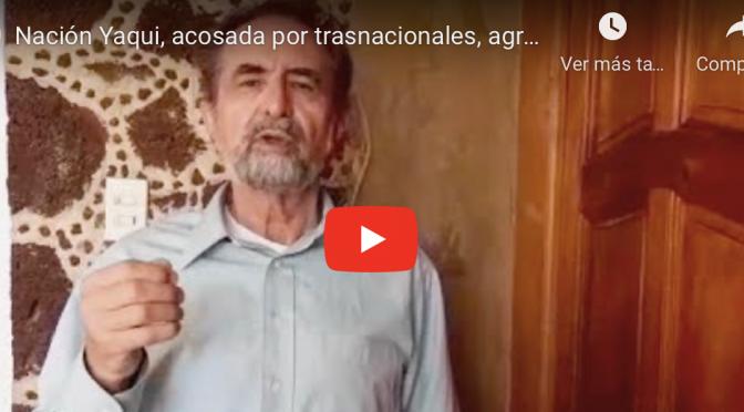 México: Nación Yaqui, acosada por trasnacionales, agroexportadores y crimen organizado (La Coperacha)