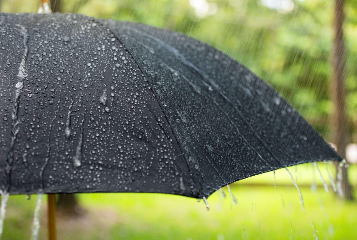Temporada de lluvias, ¡Aprovéchala!