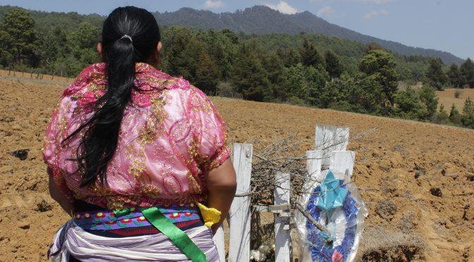 México, Guatemala, Colombia-Defensoras del territorio crean red de Futuros Indígenas contra catástrofe climática (Pie de Página)