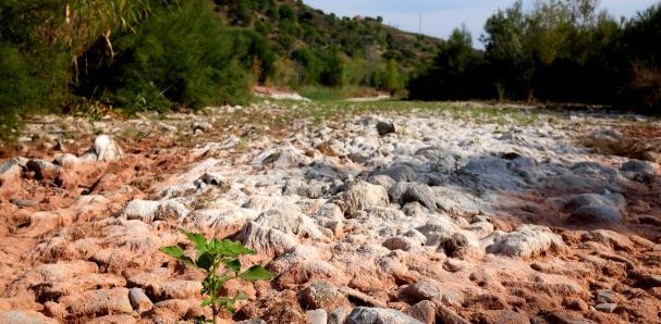 """El plan hidrológico del Ebro amenaza con condenar al Siurana a seguir siendo """"el río seco"""" (La Vanguardia)"""