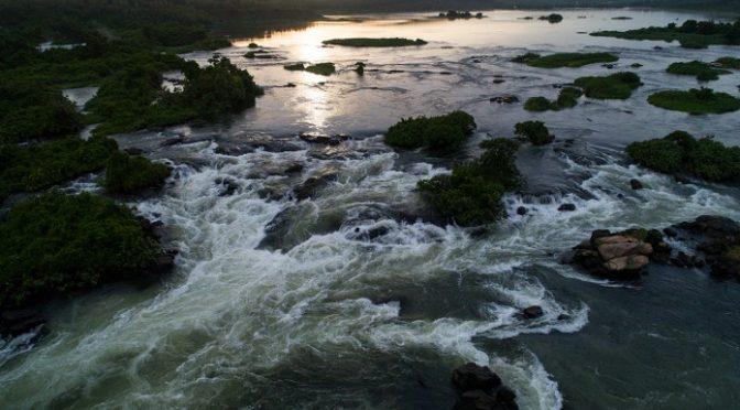 E.U. A – (Nota original en inglés) Los ríos son clave para restaurar la biodiversidad del mundo (Nation of Change)