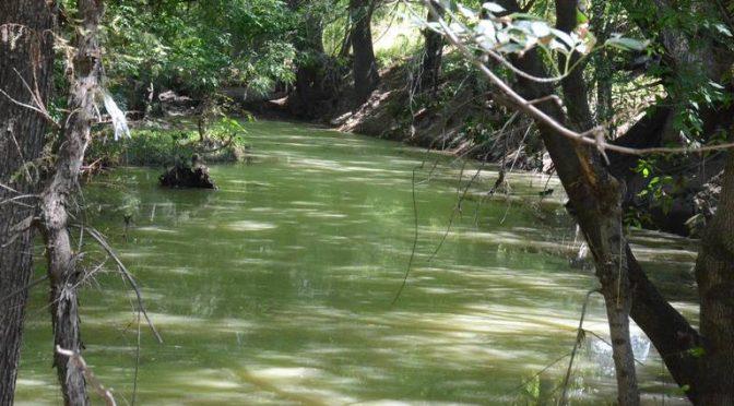 Querétaro – Urge trabajar contra contaminación de ríos (Diario de Querétaro)