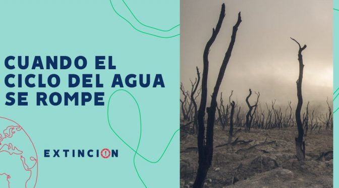 México-Sequías e inundaciones: cuando el ciclo del agua se rompe (Sopitas.com)