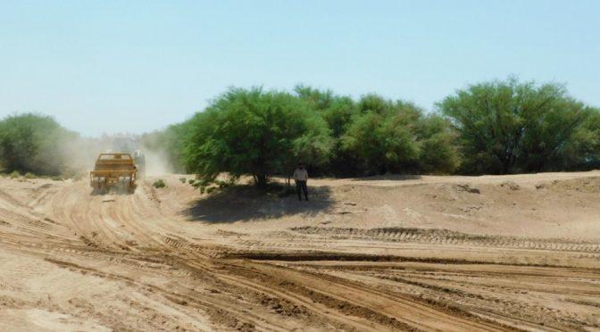 Argentina – La desertificación: el mal que aqueja a estas tierras (Programa Info Ambiente)