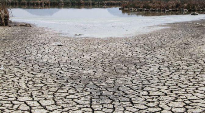 Sequía en México se debe al fenómeno de la celda de Hadley, explica especialista del SMN (Milenio)
