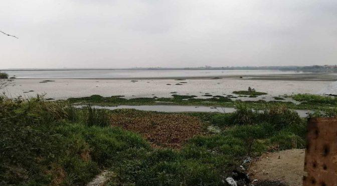 Tamaulipas: Ante sequía, demandan resolver obsoletas redes de abasto de agua (Milenio)