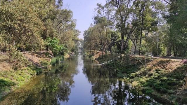 CDMX – Invita Sedema a Jornadas Verdes en Canal Nacional (SEDEMA)