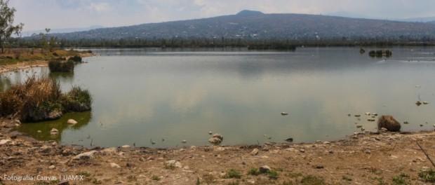CDMX – Humedal de Tláhuac es sitio de importancia mundial: UAM-X (Nosotros)