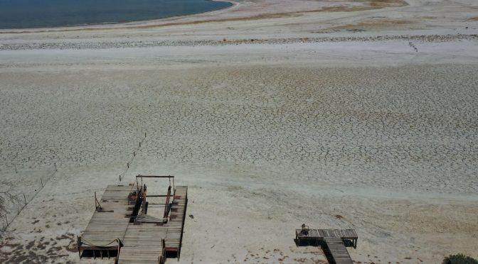 California- El gobernador de California pide racionar el agua para enfrentar la histórica sequía (El País)