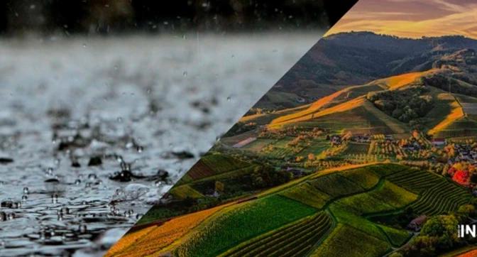 CMDX – Cosecha Capital, apuesta para el aprovechamiento de agua de lluvia en zonas de precariedad hídrica de la CDMX (Agua Capital)