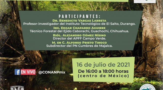 Seminario virtual – Manejo sustentable de los bosques para la conservación de los servicios ambientales: producción de agua para el bienestar humano del la vida silvestre (Semarnat, CONANP)