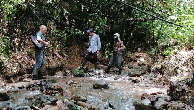 Colombia – Restauración ecológica para la conservación del agua en Salento (El espectador)