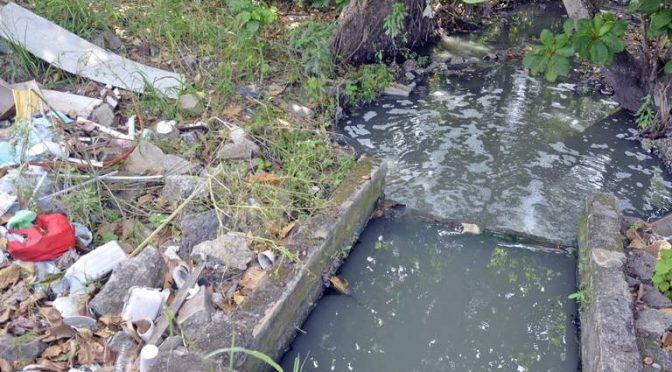 Tabasco – Laguna de las Ilusiones no recibe ayuda, sólo contaminación (El heraldo de Tabasco)