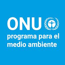América Latina-La ONU premiará a universitarios con ideas de negocios sostenibles en América Latina (ONU)