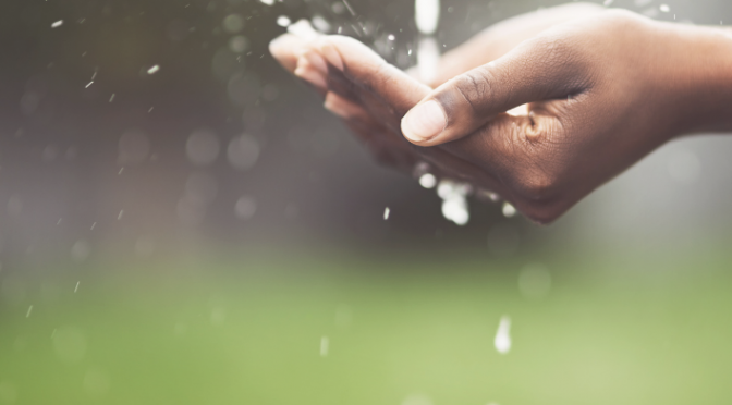 Transparencia y rendición de cuentas en el uso y gestión del agua en México