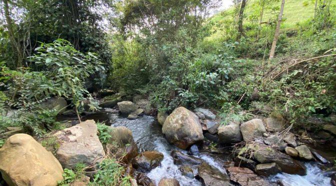 Colombia – ¿Por qué es importante la infraestructura sostenible para la recuperación del río Bogotá? (Semana)
