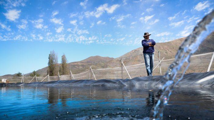 """Chile – """"Pueblo sin agua, pueblo muerto"""": Una mirada compleja del agua en el marco del proceso constituyente (El mostrador)"""
