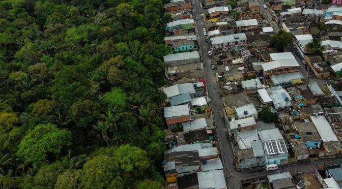 Mundo – Un ambicioso plan intentará frenar la pérdida de la biodiversidad (Noticias UN)