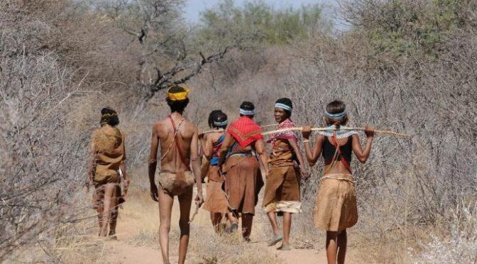 Brasil – Las poblaciones indígenas y el desarrollo sostenible (Ambientum)