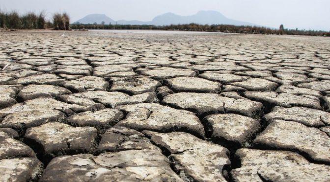 """Mundo – """"Mega sequía"""" en la frontera aviva las disputas entre EU y México por los recursos (Sin Embargo)"""