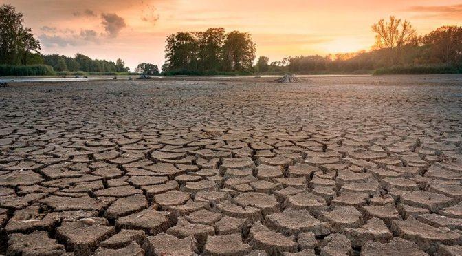 Mundo-Julio fue el mes más caluroso en el mundo en 142 años de registros (iagua)