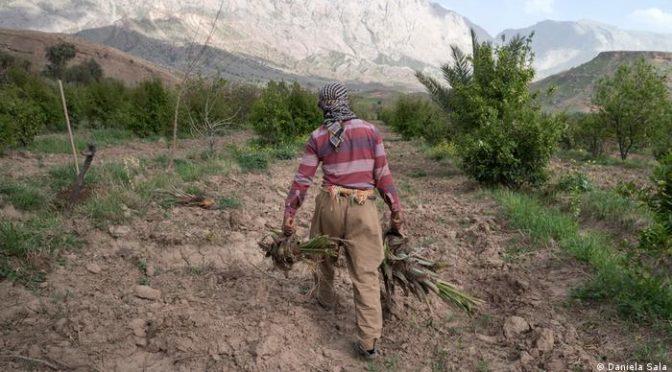 Mundo – Lucha por el agua: Irán corta el suministro de agua de Irak con presas (DW)