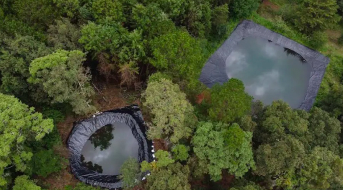 Colima – El cuidado del bosque ayuda a abastecer de agua ante graves sequías (El Comentario)