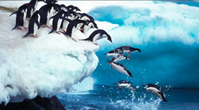 Mundo – El planeta tiene fiebre, ¿qué significa un aumento de 1.5 grados en la temperatura? (El Universal)