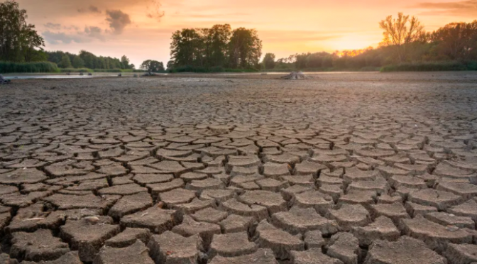 México – Sequía en México afectará a energía, minería y bebidas: Moody's (López Dóriga)