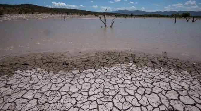 México – Empeora el estrés hídrico que envuelve a México: 8 de 13 regiones lo padecen (El Financiero)