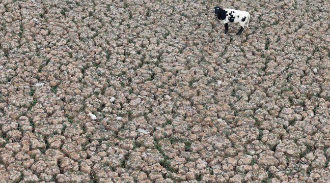 Mundo – El control del agua: la guerra económica que se avecina (El País)