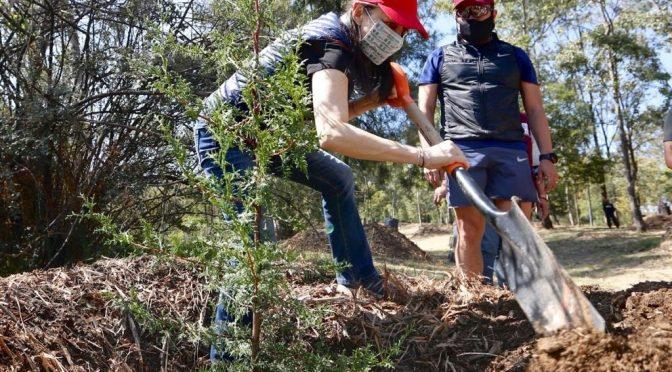 CDMX-Impulsa SEP educación ambiental al volver a clases (La Jornada)