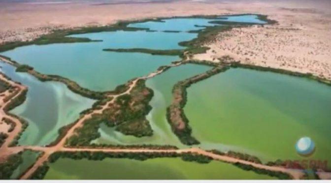 Baja California – Reporte de Las Arenitas en Mexicali (La Razón)