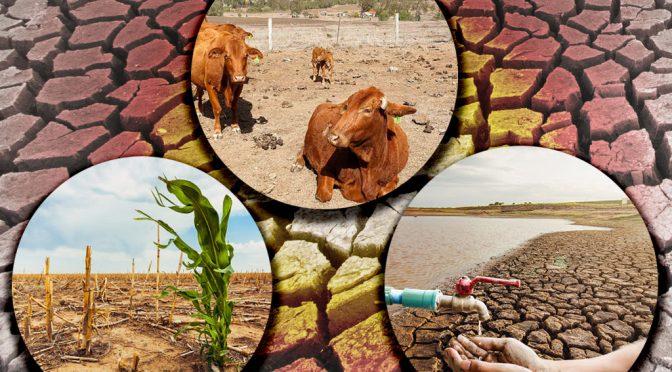México – La sequía severa en México (UNAM)