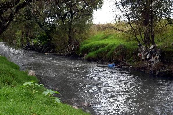 Cuenca del Atoyac-Morir junto al río: contaminación del Atoyac es un peligro para la salud (Página 3)