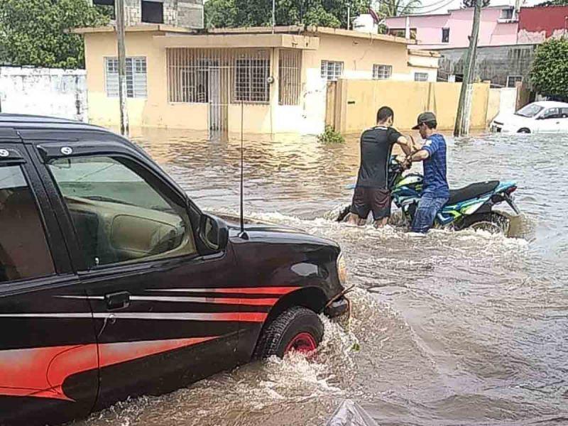 México-Alerta Greenpeace México de inundaciones y sequías más intensas para la CDMX (Excelsior)