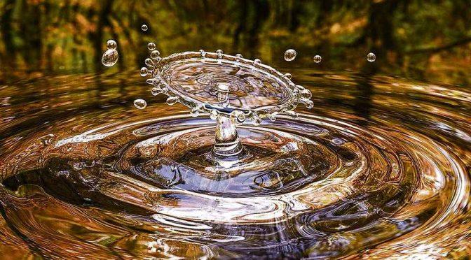 Mundo – Celebración del día internacional del agua (El diario)