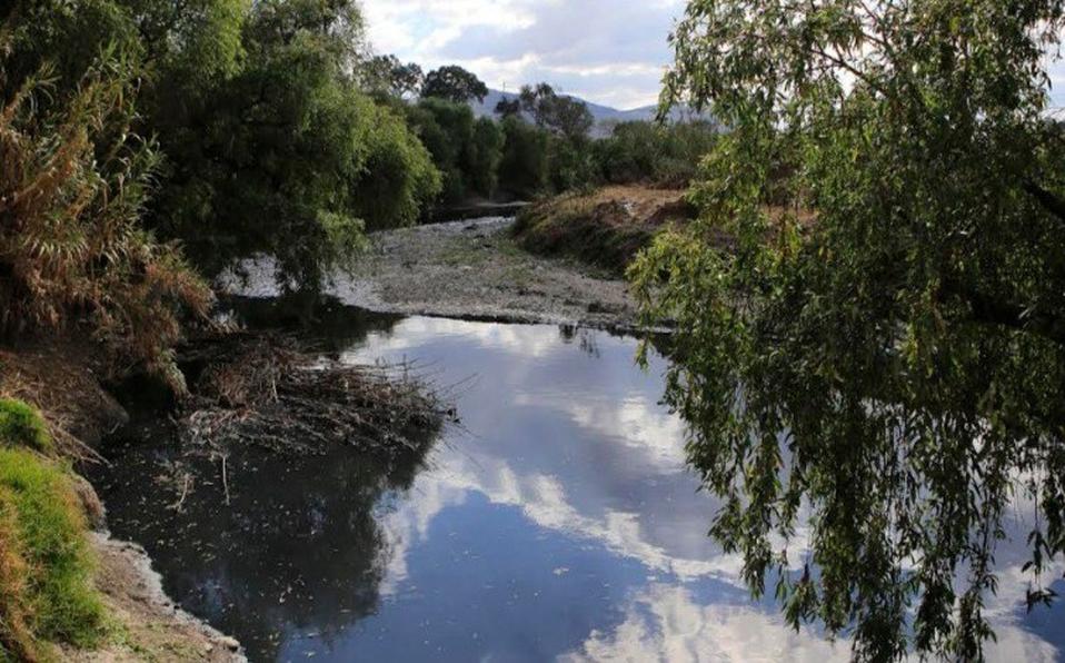 Guanajuato: Cuidan 20 Áreas Naturales Protegidas con plan de Seguridad Hídrica en Guanajuato (milenio.com)