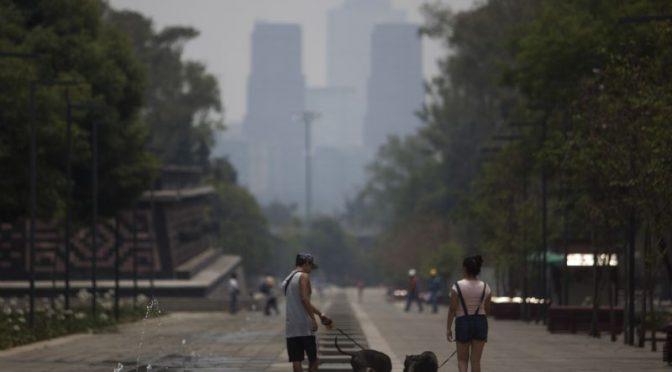 Mundo – Vivir en un medio ambiente sano, sin riesgos, limpio y sostenible es un derecho humano: ONU (Proceso)