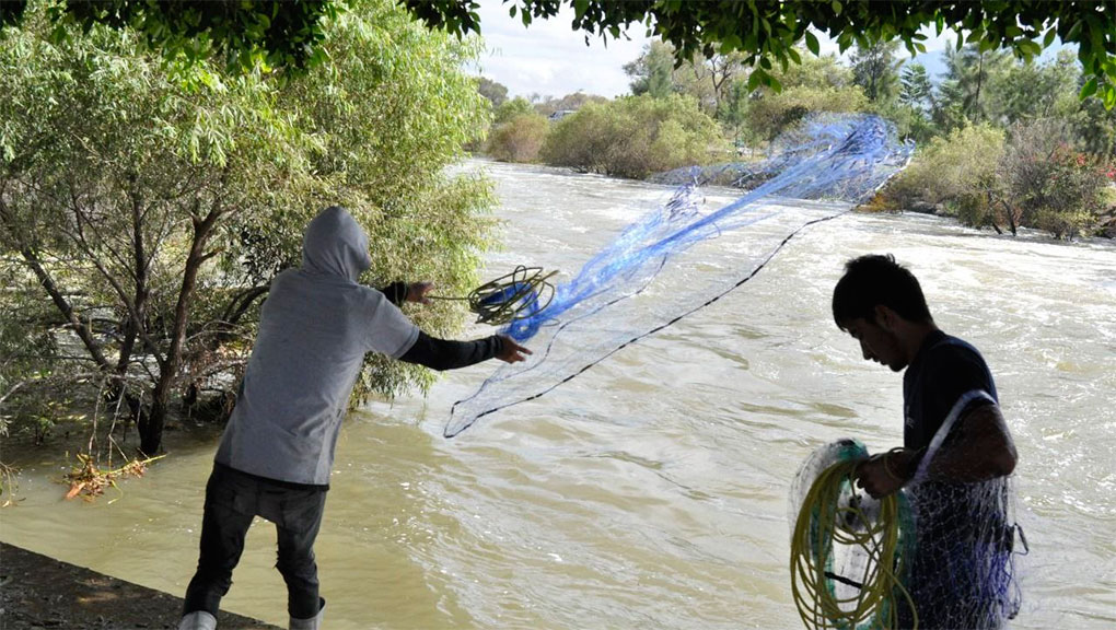 Guanajuato-Aprovechan desfogue de Laguna de Yuriria para sacar su sustento diario (Periódico Correo)